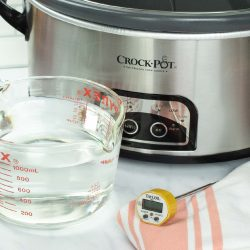 slow cooker with a measuring cup of water and a food thermometer