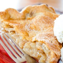 Slice of apple pie with top crust and a scoop of vanilla ice cream with a fork