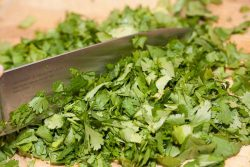knife chopping cilantro