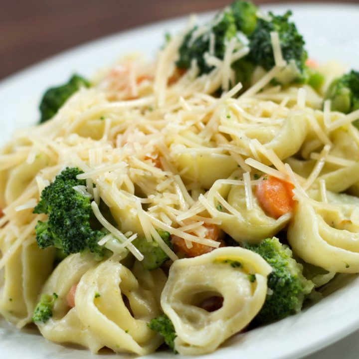 Plate of cooked tortellini and Alfredo sauce with broccoli and carrots garnished with shredded Parmesan cheese