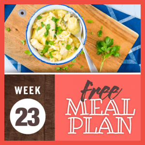 Meal Plan Week 23; overhead image of bowl of chicken and dumplings garnished with parsley