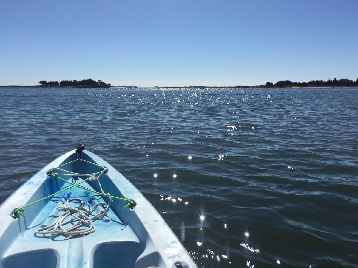 Front end of a kayak on water moving toward an island