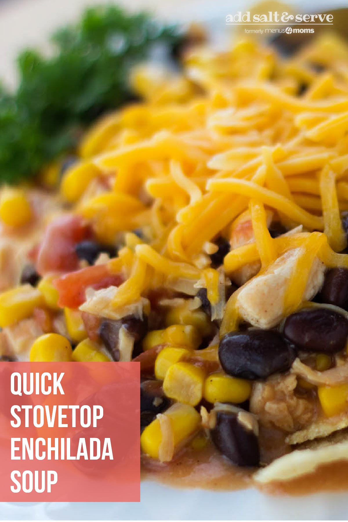 Corn and black beans topped with shredded cheddar cheese on a bed of tortilla chips on a white plate with text Quick Stovetop Enchilada Soup - Add Salt & Serve logo