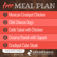 Meal Plan for Week 28 (Group 1)