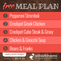 Meal Plan for Week 45 (Group 1)